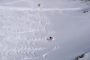 Drawing endless fresh powder lines with Powderchase